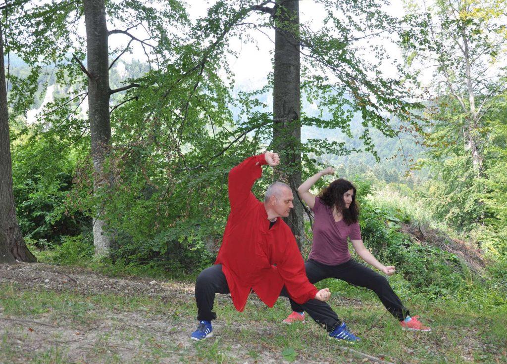 Chi Kung - sistem pentru prezervarea sanatatii, vitalitatii si longevitatii