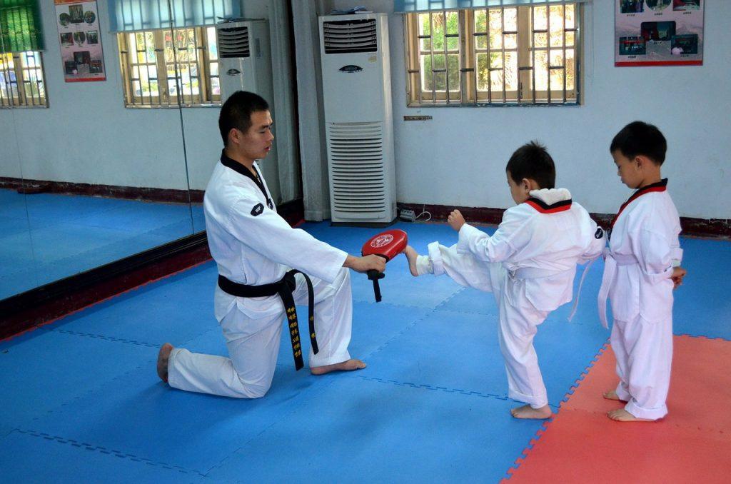 Kyokushin Kids – introducere in artele martiale pentru copii