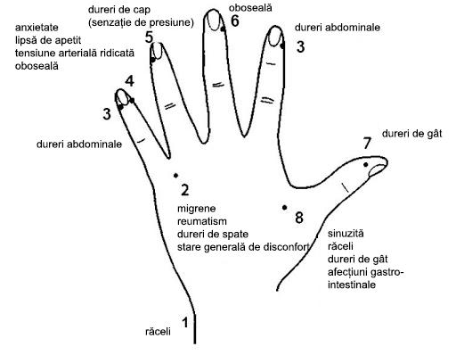 De ce este atat de sanatos masajul mainilor